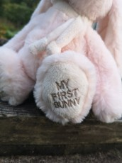 My_first_Bunny_1