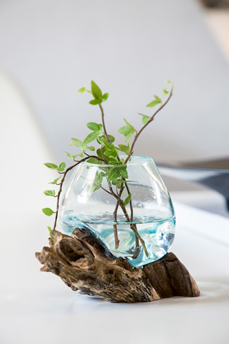 glasskal1