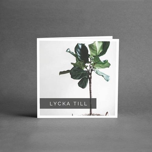 Gratulationskort med vit botten och en grön växt på stam med texten lycka till från card store