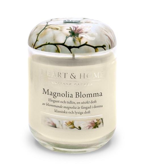 magnoliablommastor